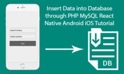 insert data into database